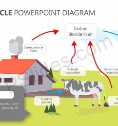 carbon cycle powerpoint diagram slide1  [ 1280 x 720 Pixel ]