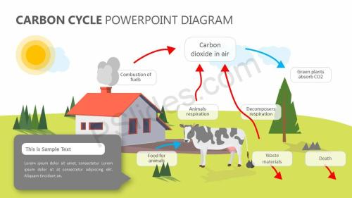 small resolution of carbon cycle powerpoint diagram slide1
