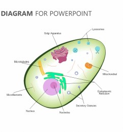 human cell diagram for powerpoint jpg [ 1280 x 720 Pixel ]
