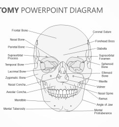 skull anatomy powerpoint diagram jpg [ 1280 x 720 Pixel ]
