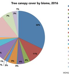 2 song 2018 tree canopy cover by biome pie 768 [ 1200 x 686 Pixel ]
