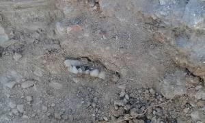 restos en fosa de La Gallera