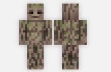 skin de Groot
