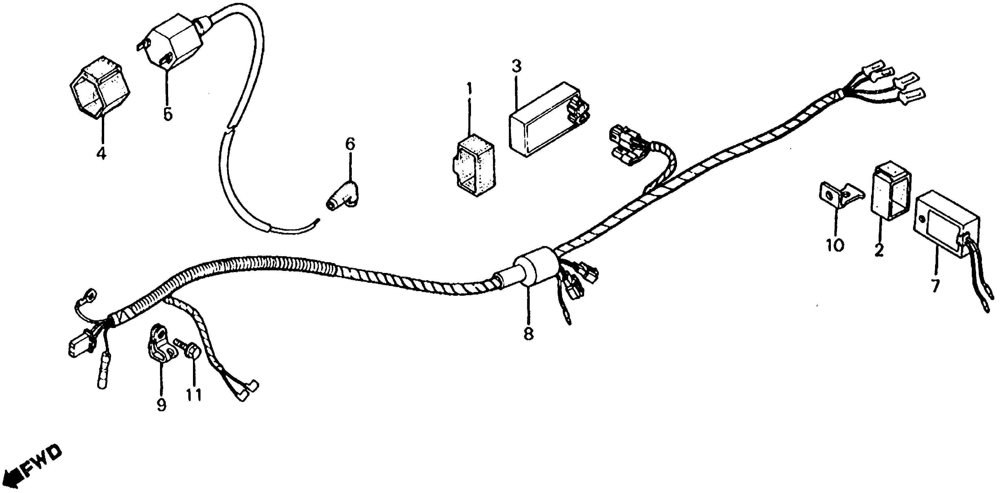2004 Honda Crf70f Wiring Diagram FULL HD Version Wiring