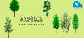 Pack de árboles en png
