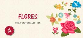 32 flores en PNG