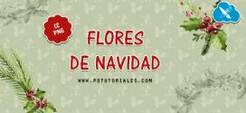 12 flores de Navidad