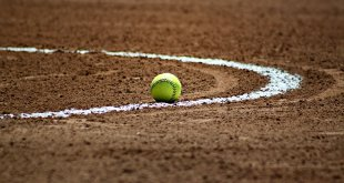 Softball drops four games