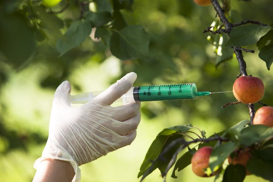 GMOs Facts vs. Myths