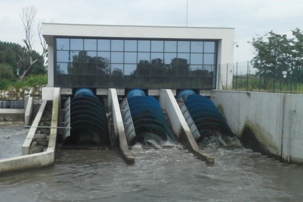 Hydrodynamic Screws: From Archimedes to Electricity