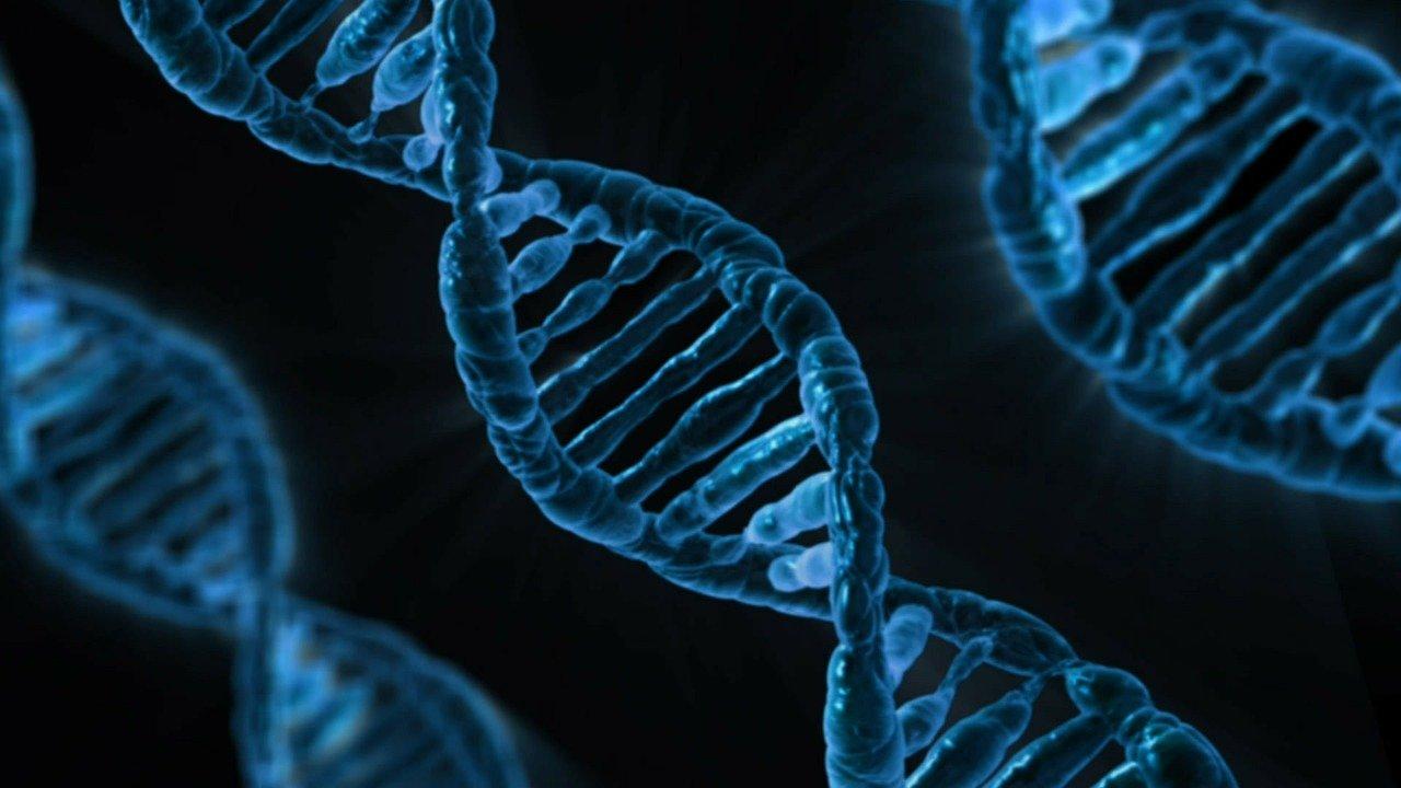 Top research breakthroughs of CRISPR in 2020
