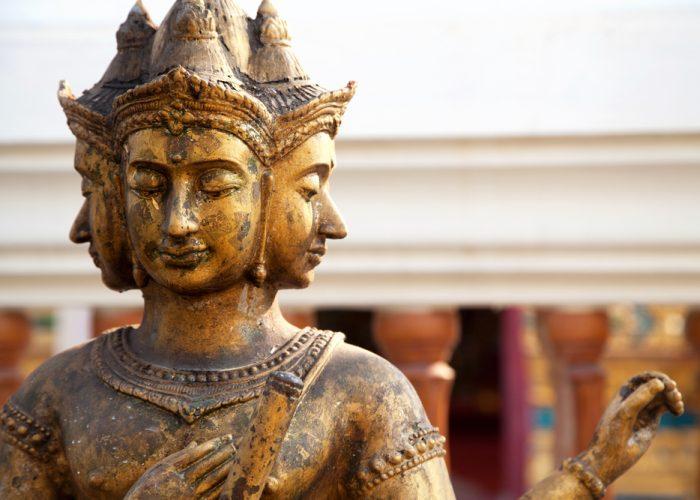 Vishnu lotus flower