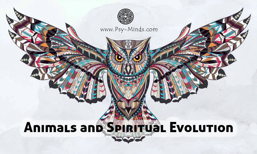 Animals Spiritual Evolution