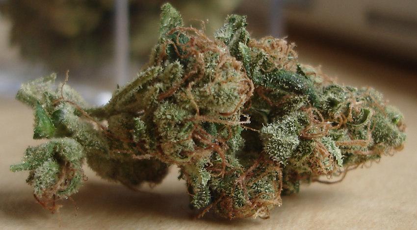 Marijuana and Creativity