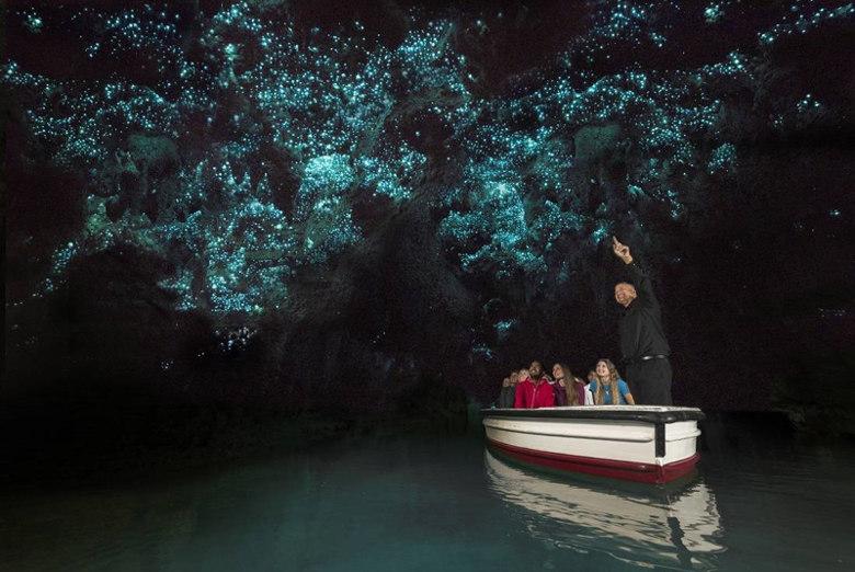Waitomo-Glowworm-Caves-Waitomo-Caves-New-Zealand fairy tale