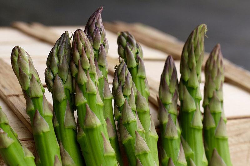 Asparagus healing plants