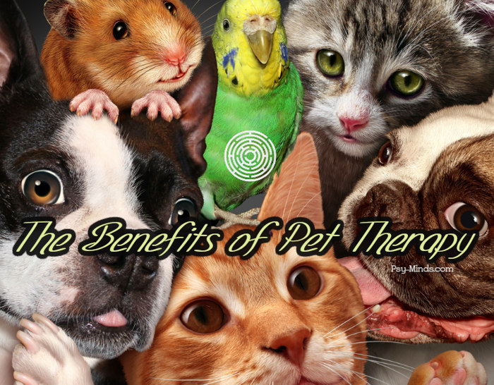 The Benefits of Pet Therapy