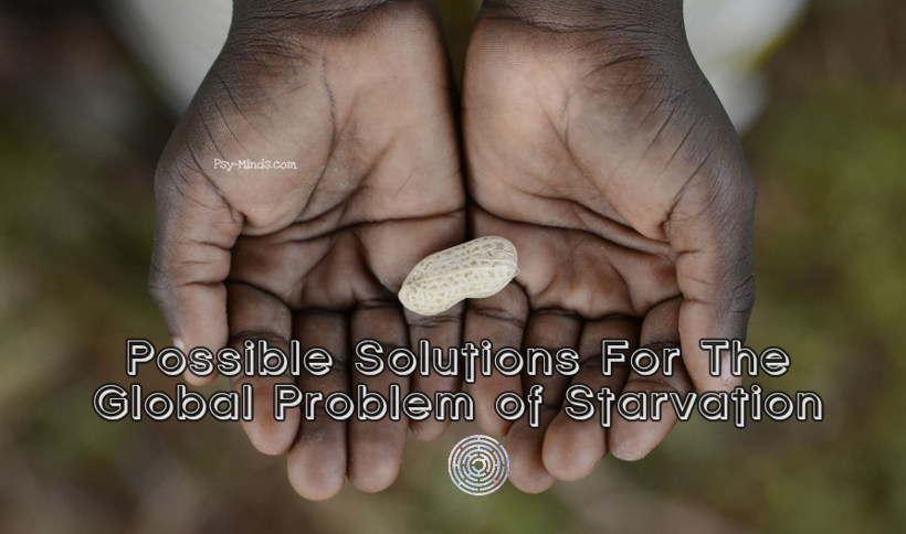 Possible Solutions For The Global Problem of Starvation