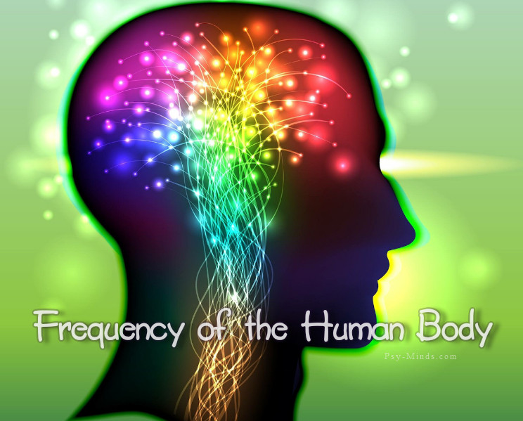 Frequency of the Human Body