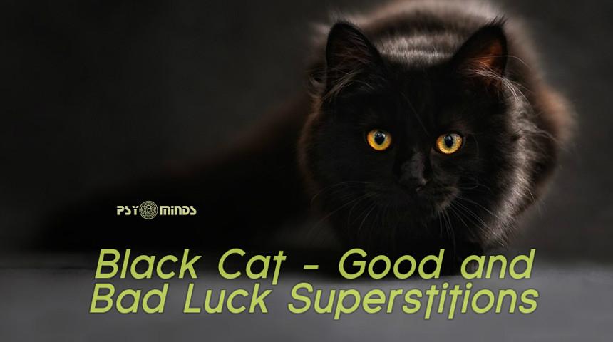black cat superstitions