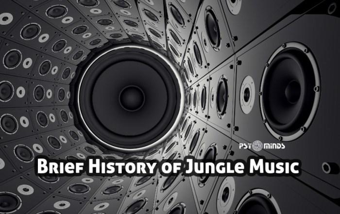 Brief History of Jungle Music