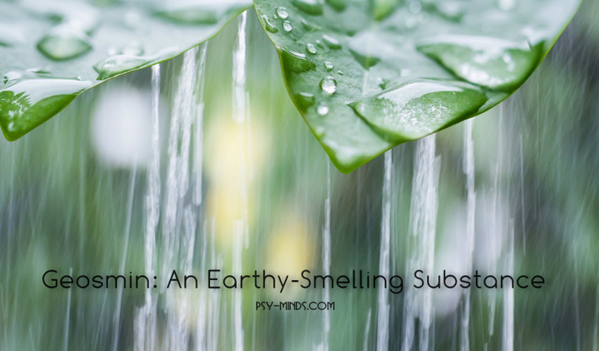 Geosmin An Earthy-Smelling Substance