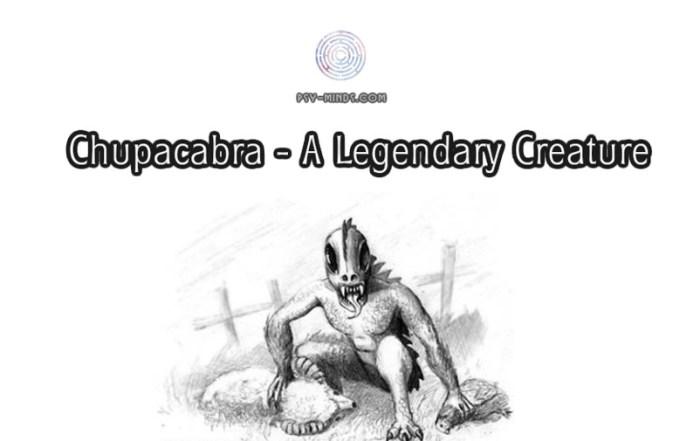 Chupacabra - A Legendary Creature