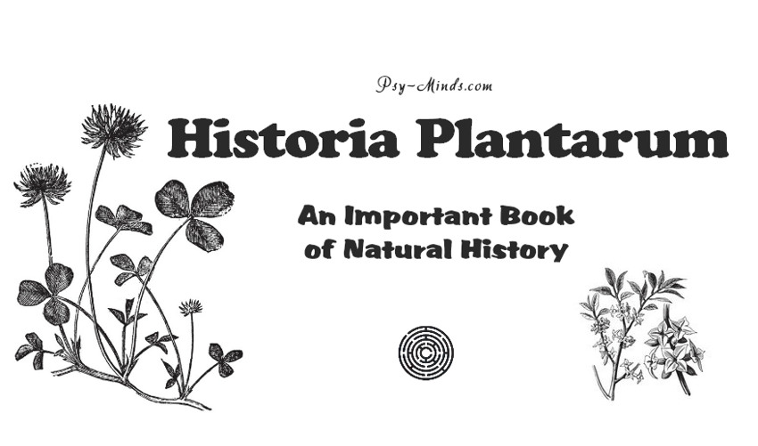 Historia Plantarum - An Important Book of Natural History
