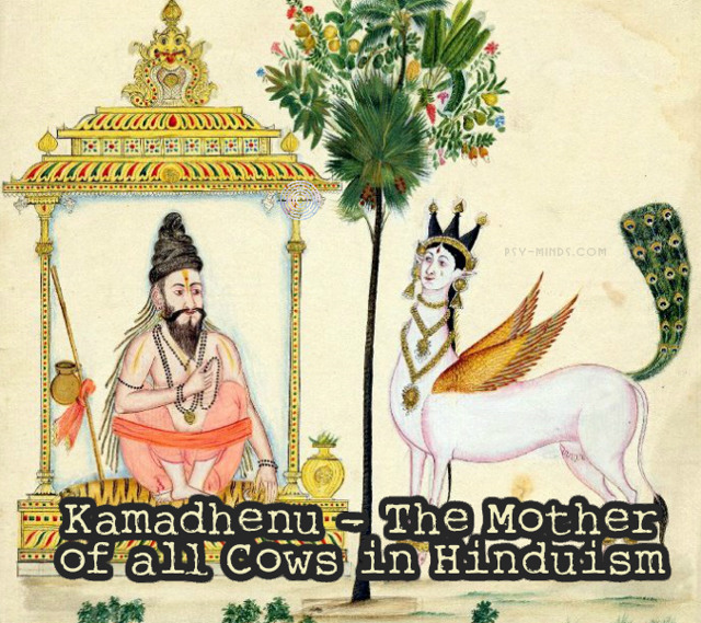 Kamadhenu - The Mother of all Cows in Hinduism