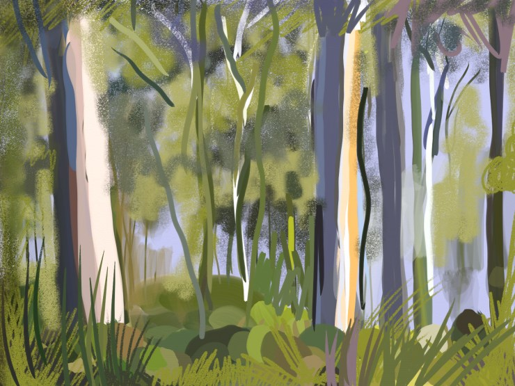 Trees Queensland #0195 in http://thousandsketches.com