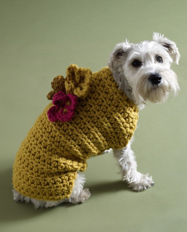Free crochet pattern - dog sweater with flowers.