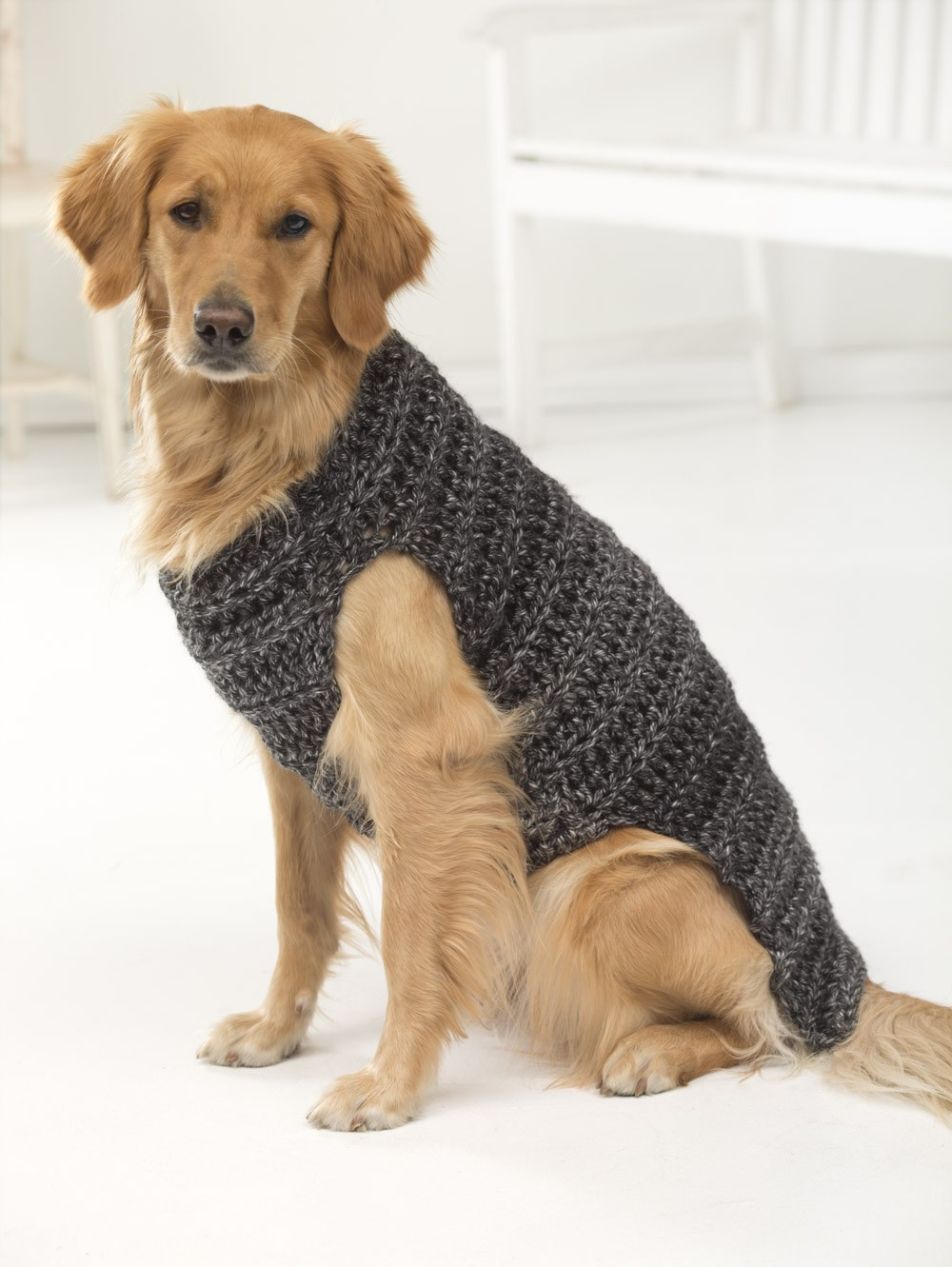 Free Dog Sweater Crochet Patterns , Psychedelic Doilies