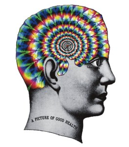 trippy phrenology head