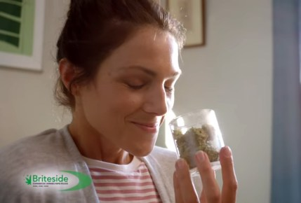 Briteside cannabis