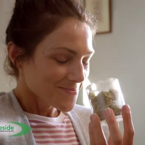 Brilliant Cannabis Commercial Parodies Ridiculous Pharma Ads