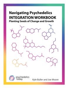 Integration Workbook - Navigating Psychedelics - Psychedelics Today