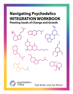 Navigating Psychedelics Integration Workbook