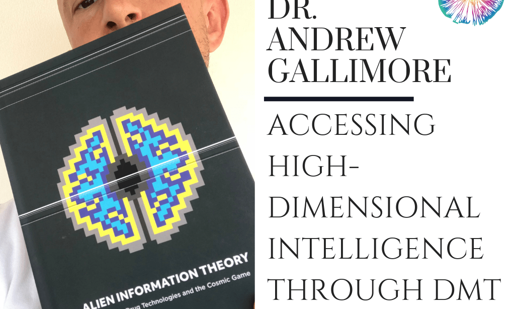 Dr  Andrew Gallimore - Accessing High-dimensional