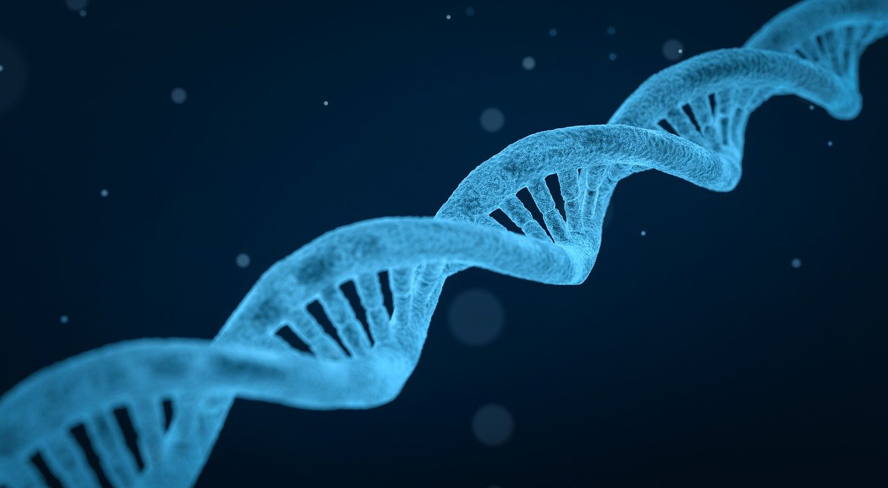What Today's Genetics Topics Mean for Your Software