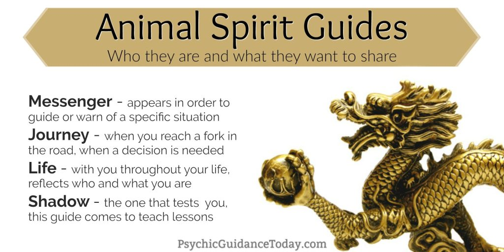 animal spirit, animal spirit guide, totem, intuition, psychic development, lessons in joyful living, kimberly rinaldi