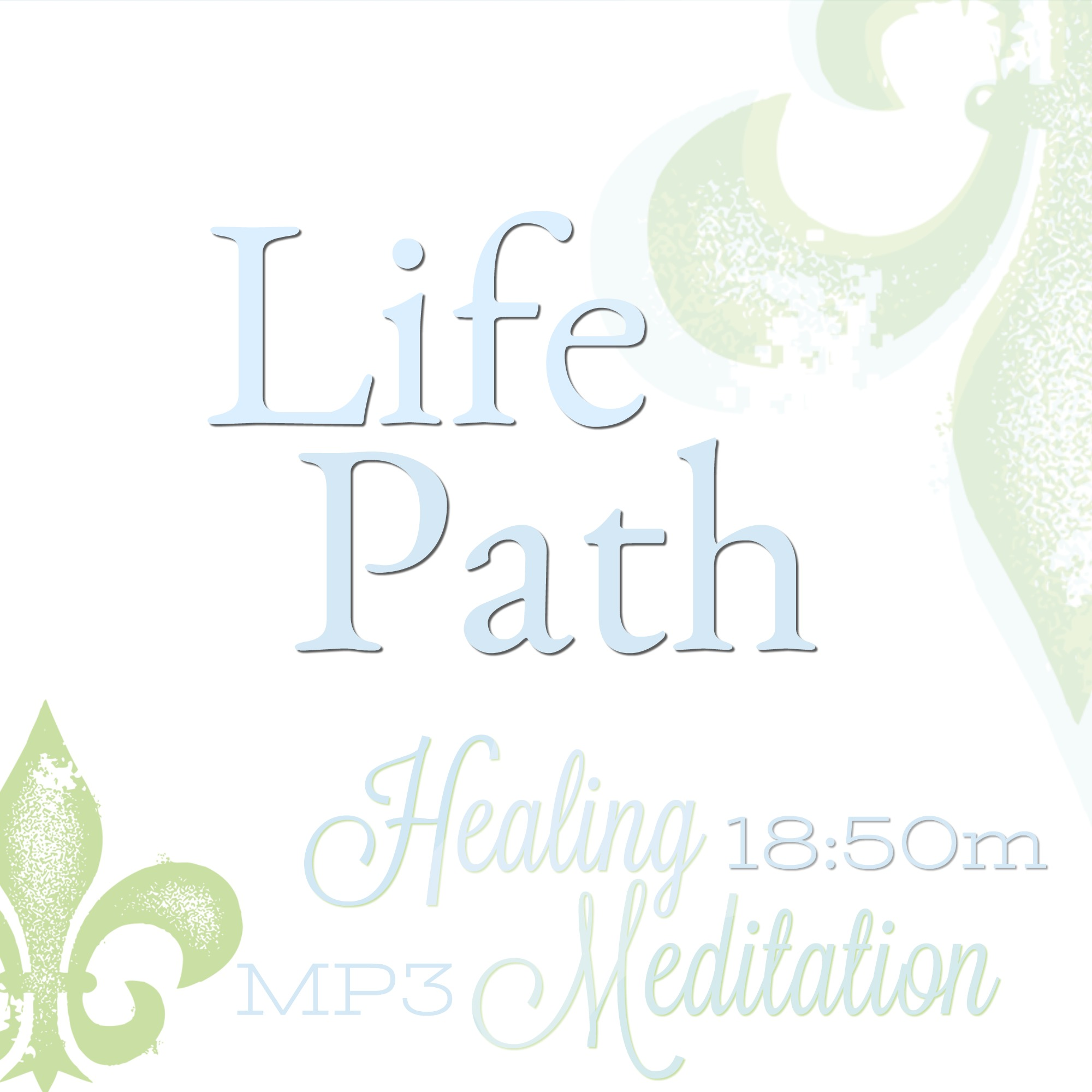life path meditation, life clarity meditation