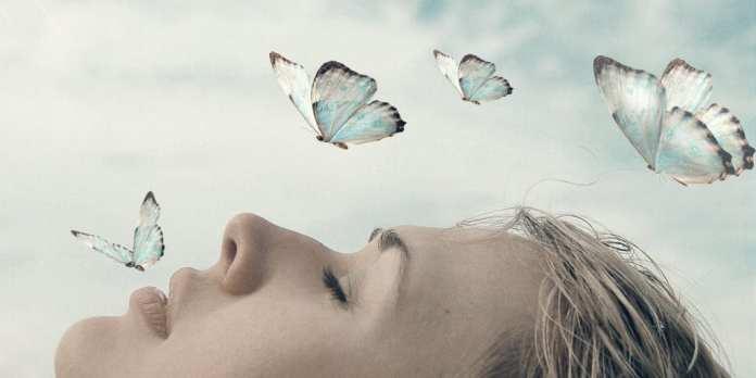 Precognitive Dreaming
