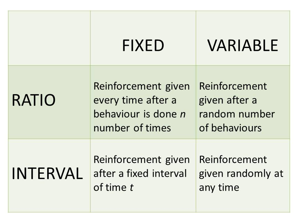 reinforcement schedules in operant conditioning
