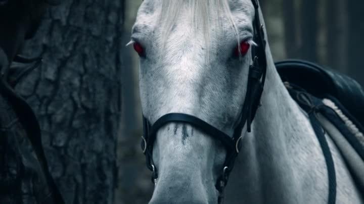 SH_Horse