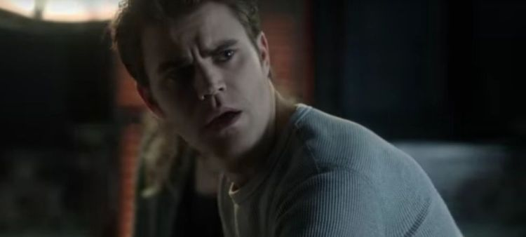 tvd 713 stefan marked