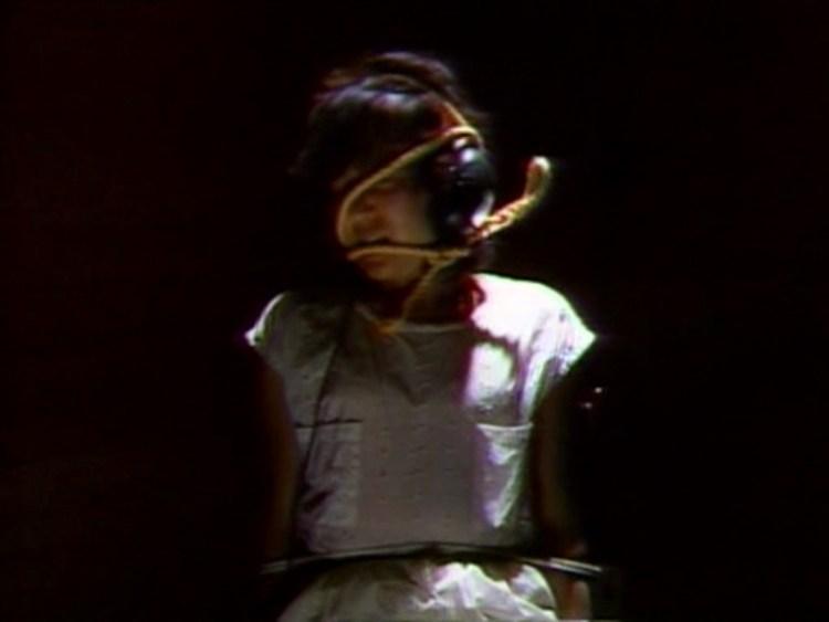 guinea-pig-devils-experiment-02