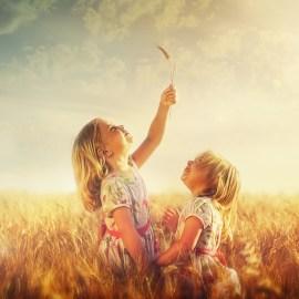 Gelassener auf andere reagieren – Jeder handelt aus seiner besten Option!