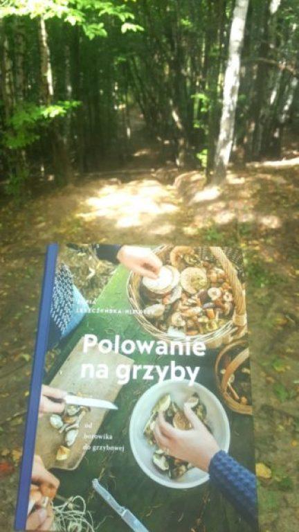 20190916_0901352076352500-767x1024 Polowanie na grzyby: od borowika do grzybowej. Zofia Leszczyńska-Niziołek. Buchmann. Jesień 2019