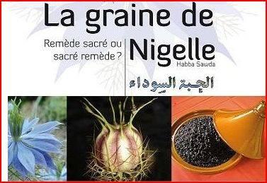 bienfaits des graines de nigelle sur la peau et les cheveux-psychologie-sante-tunisie
