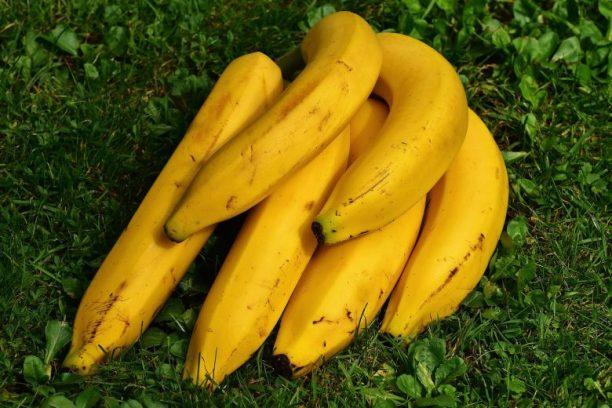 Banane calories, vitamines et potassium et bienfaits santé